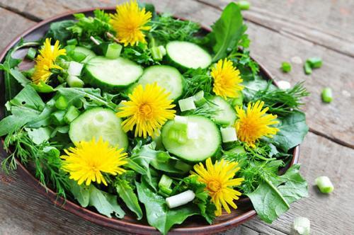 Рецепт салата из одуванчика «Витаминный»