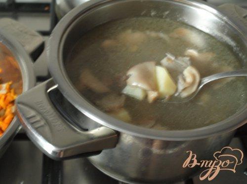 Суп с вешенками и перловкой. Суп с вешенками и перловой крупой 2019