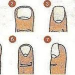 Характер по форме ногтя. Характер по форме ногтей.