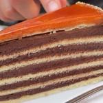 """Торт """"Добош"""".  """"Добош"""" - традиционный венгерский торт, состоящий из шести слоёв бисквита с шоколадным кремом и карамельной глазурью."""