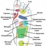 Здоровье через ноги.