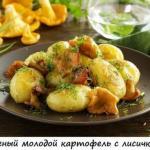 Что приготовить из картофеля.
